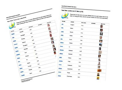 Player registration sheet 3