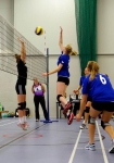 View the album PMVC Ladies v Cardiff Celts & Torexe Topcats